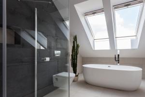 skylights in modern bathroom